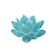 Teal line drawing of a lotus on white