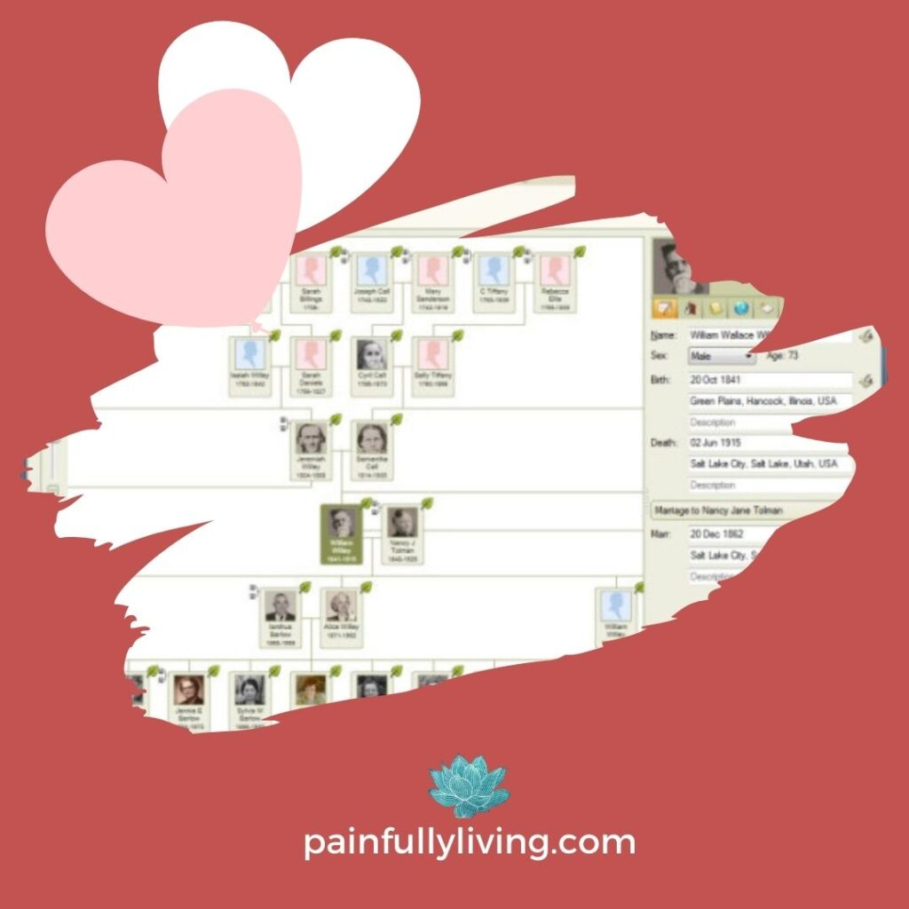 """Red background with pink and white hearts in the top right corner.  In the center is a jagged edged image of a ancestry.com family tree with green leaf icon """"hint's."""