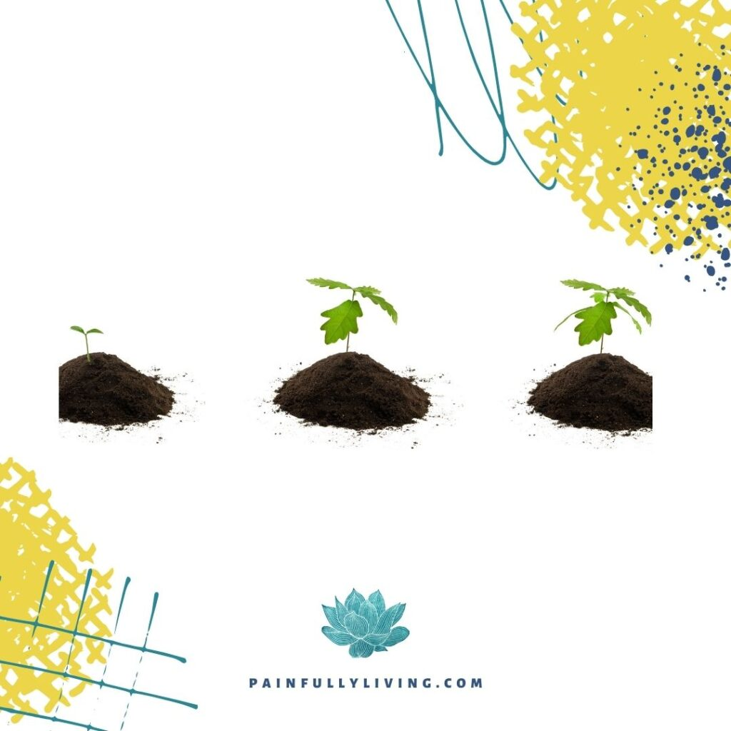 White square with abstract lines, droplets, and squiggles in gold, teal, and dark blue in the top left and bottom lower corner. Photos of oak saplings from first sprout, to four leaves, to seven leaves.