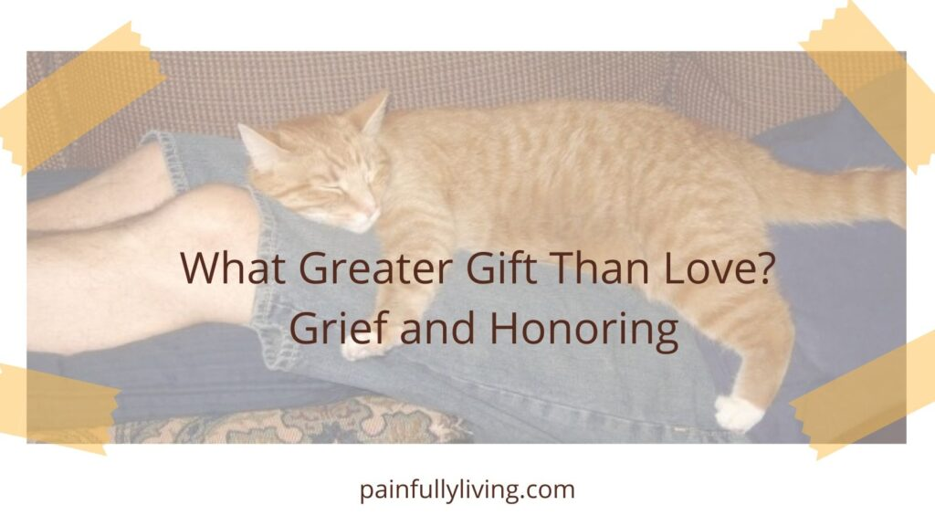 Orange tiger cat draped over man's legs (sleeping on a couch). Tape pieces in the corners like a photo album.  Centered: Title Text: What greater Gift Than Love Grief and Honoring