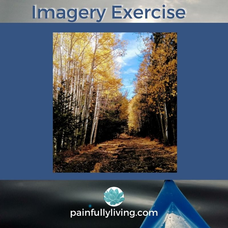 Blue Text: Imagery Exercise with image of a path with aspen trees lining it.  The leaves a bright yellow and gold. Imagery is used for grounding and regulating.